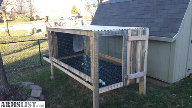 Cheap Dog Kennels Indianapolis